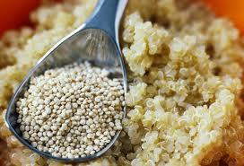 Photo of the pseudo grain called quinoa. Quinoa is a gluten-free food.